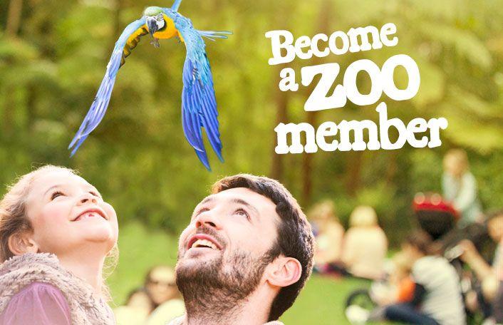 Monarto Zoo - Share The Wonder