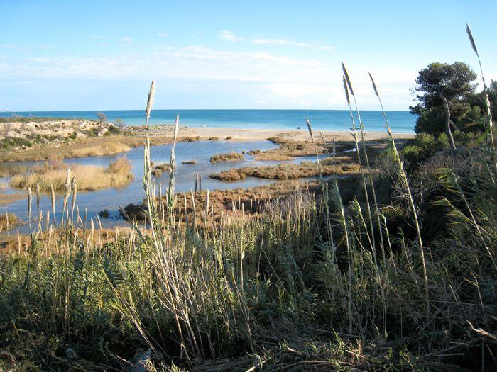 Platja Llarga - Playa Larga // Mont-roig del Camp - Costa Daurada