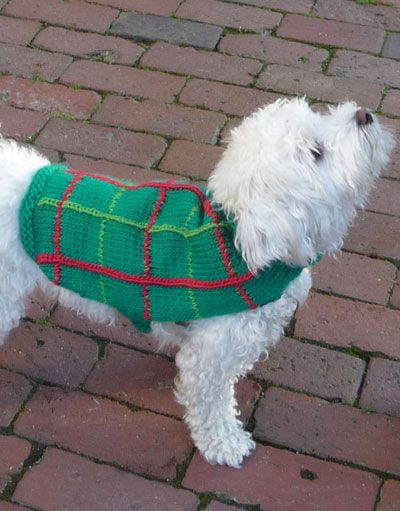 Free Pattern Crochet Dog Jacket : Free Crochet Dog Coat Pattern Here is the free ...