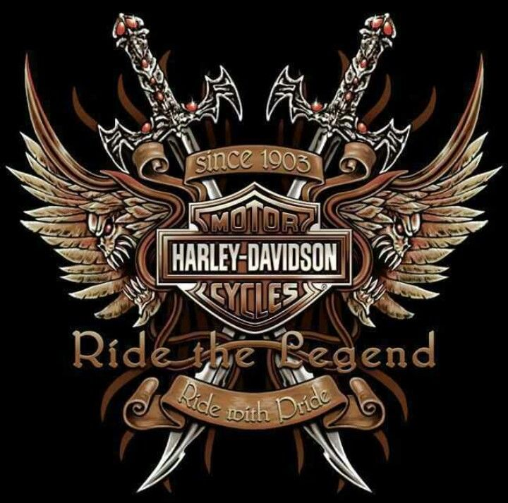 Cool Harley Pictures | Cool | Harley Davidson #HDNaughtyList