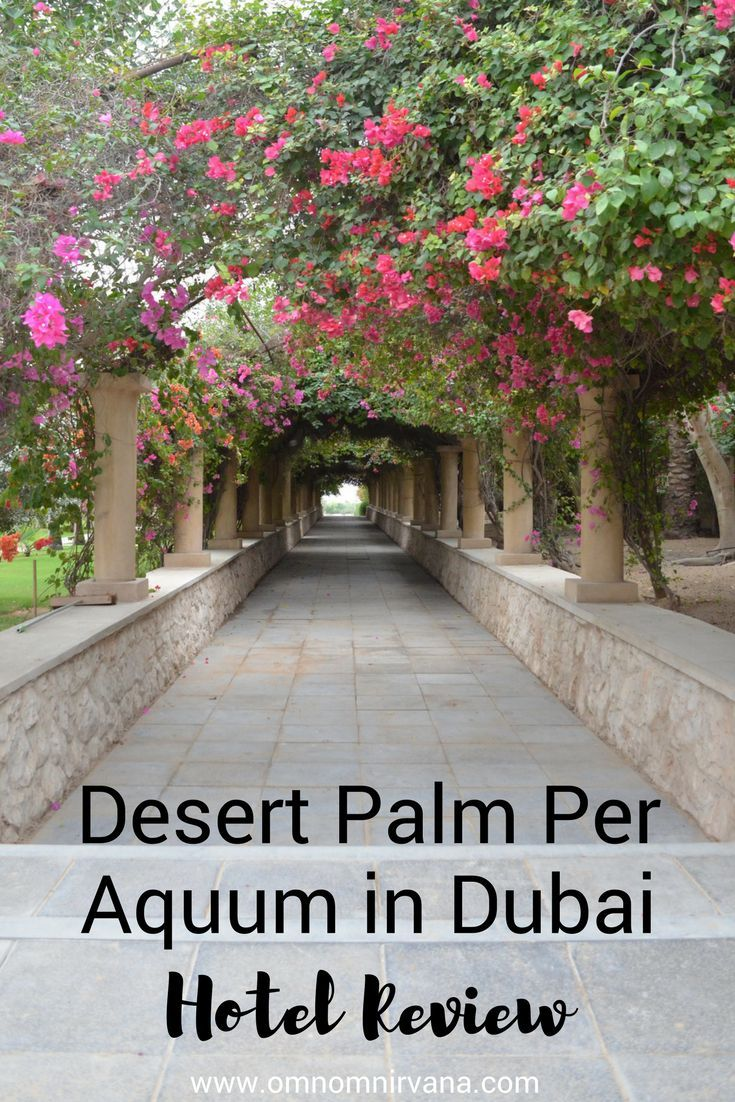 The Desert Palm Per Aquum is a delightful resort in Al Awir, Dubai. It features stables, wedding venues, beautiful rooms, and beautiful dining options. If you're looking for somewhere to stay in Dubai that is unique and luxurious, the Desert Palm Per Aquum is for you. Make sure you save this to your travel board so you can find it.