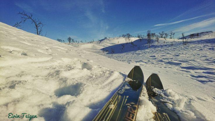 Nygårdsfjellet, Narvik