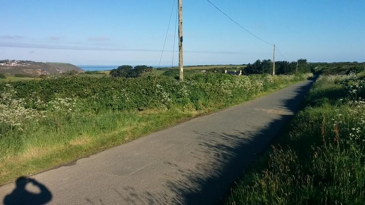 "@Ben Ranyard: ""This is our lane and beautiful uncut verge. Yup...that's the sea! ;)"""