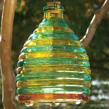 how to make wasp trap australia
