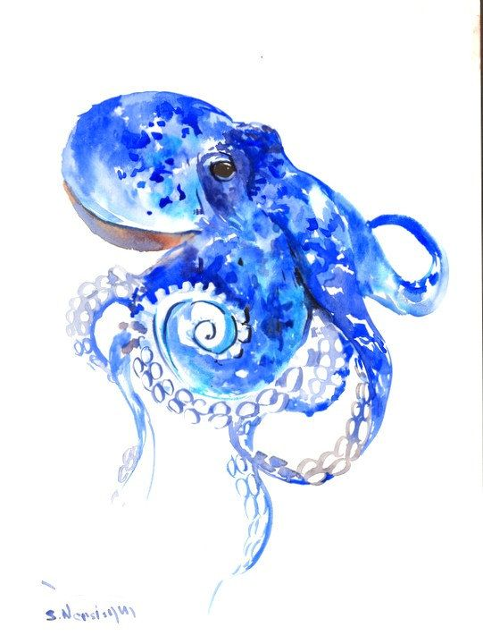Octopus Original Watercolor Painting 12 X 9 In Blue Sea