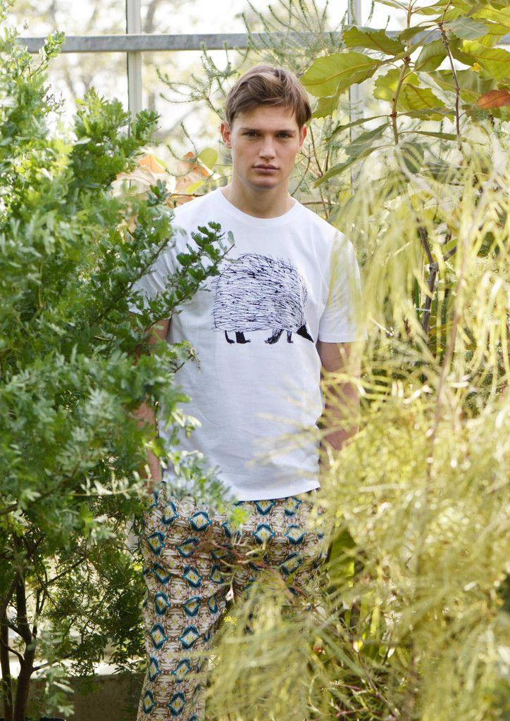 mirocomachiko (Tachyglossus Aculeatus) – Design Tshirts Store graniph