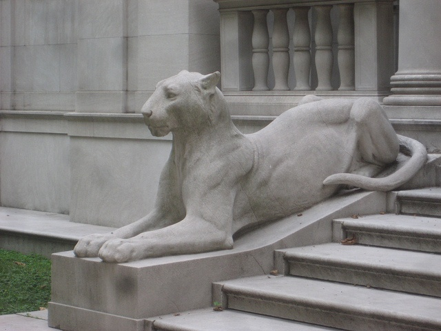 Panther gargoyle stone statue sculpture J P Morgan Library Entrance 0308, via Flickr.