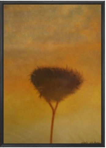 signed art print Sunset Tree Art Print 6x4 8x10 Nature Giclee Sunrise digital painting 5x7 12x18 16x20