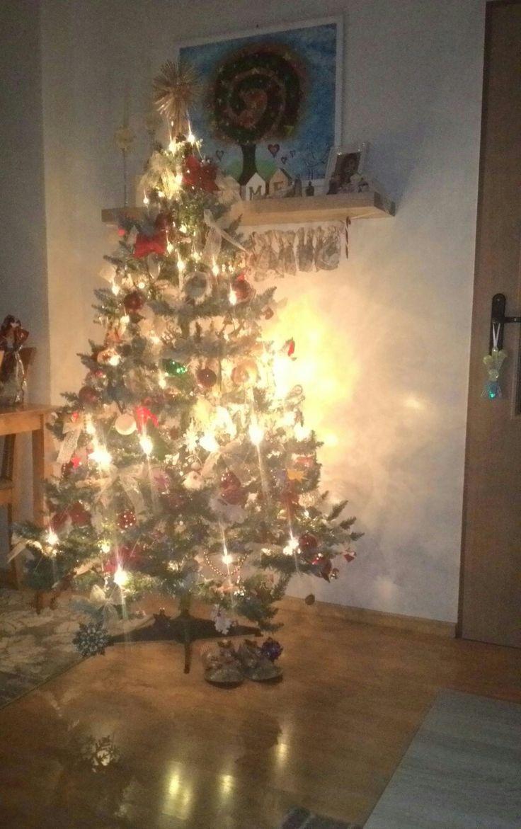 Christmas tree, traditional christmas tree, tradicny vianočný strom, vianocny strom