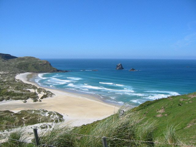 Discover the remarkable wildlife and dramatic coastal scenery at Sandfly Bay on New Zealand's Otago Peninsula. Just be aware it is called Sandfly Bay for a reason.
