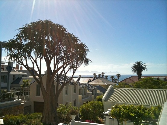 Kalk Bay view