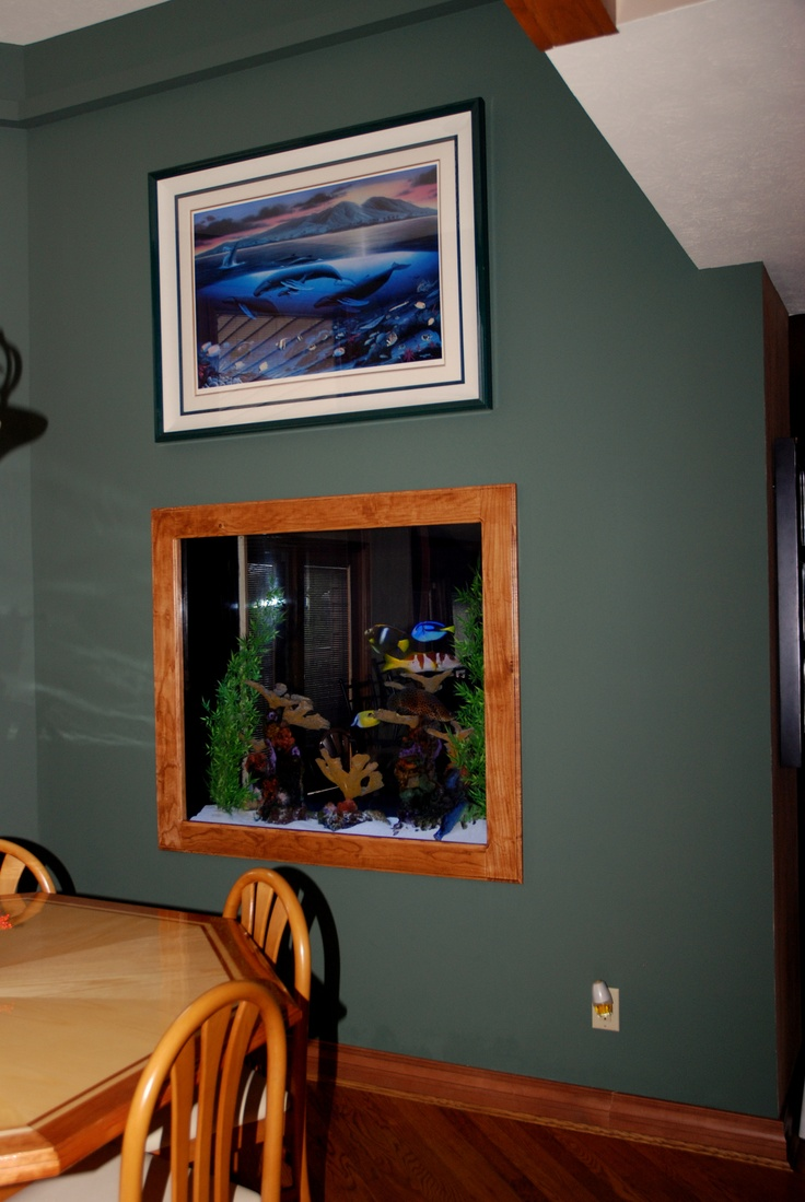 Owners are able to view this aquarium from both side of the wall. This square 300 gallon aquarium is a saltwater fish only aquarium