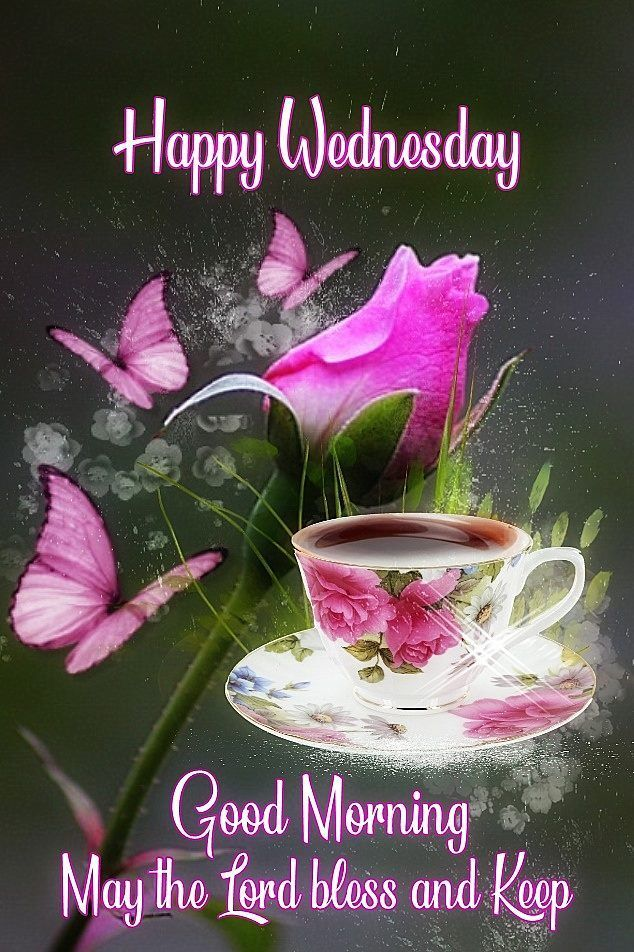 Butterfly Rose Happy Wednesday wednesday wednesday quote wednesday sayings  best wednesday q… in 2020 | Good morning prayer, Happy wednesday pictures,  Good morning wednesday
