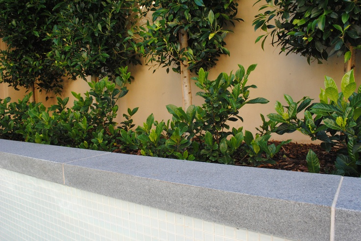 + images about Granite Pavers & Tiles on Pinterest  Granite, Outdoor