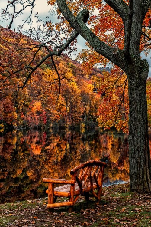 Fall Harvest Wallpaper Images Autumn Serenity Everything Autumn Pinterest Autumn