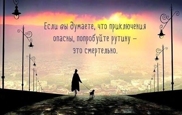 10376061_419216788218224_3069855704701099624_n.jpg (600×380)