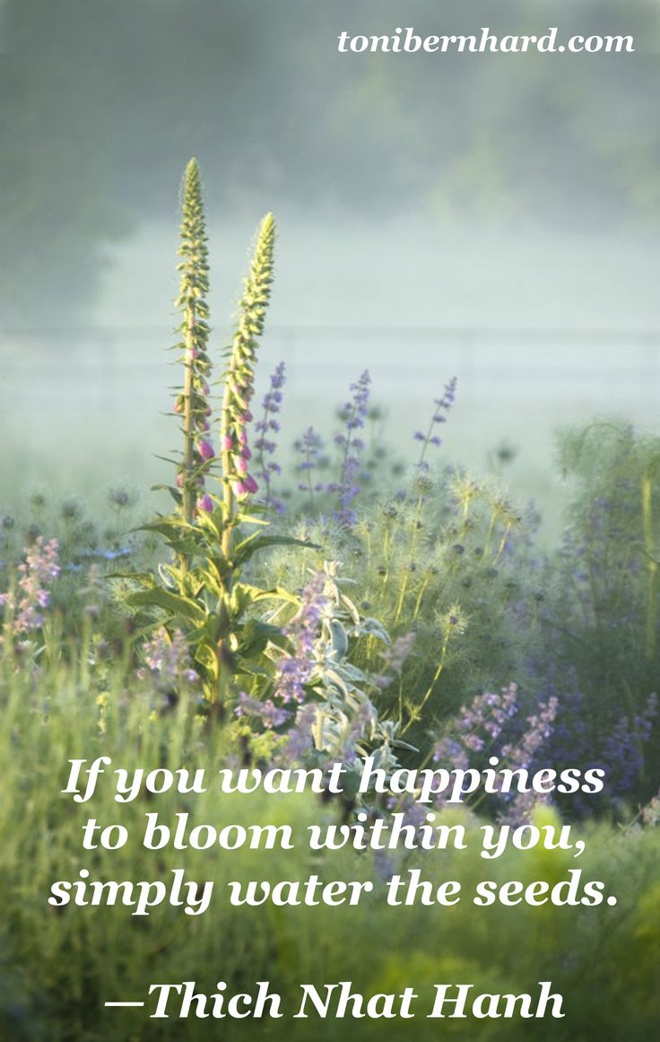 Happiness Quotes Thich Nhat Hanh. QuotesGram