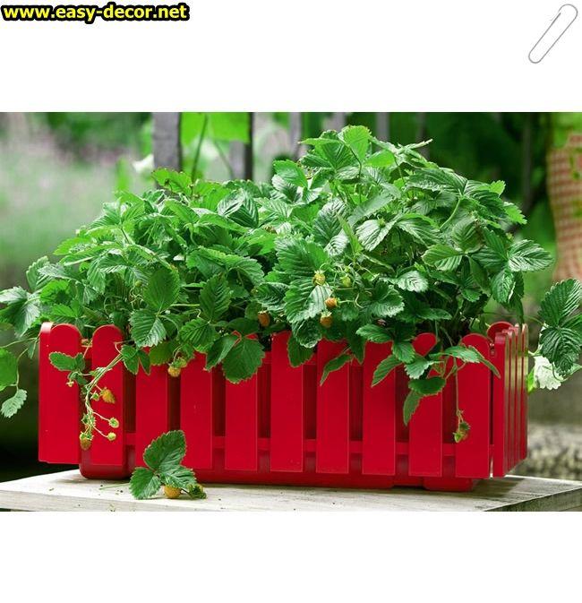 Flowerpot-Models-4