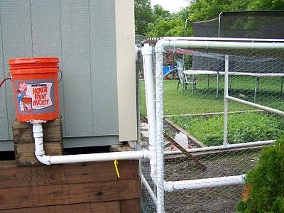 Easy DIY Auto Chicken Waterer - for the warm months