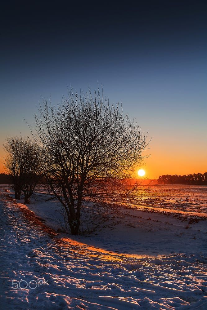 Frozen morning sun by Martin Schäfer MS-Bilder... trees sky lake frozen forest sunset mountains winter color water cold nature travel blue sun light clouds tree white snow mountain ice naturallight