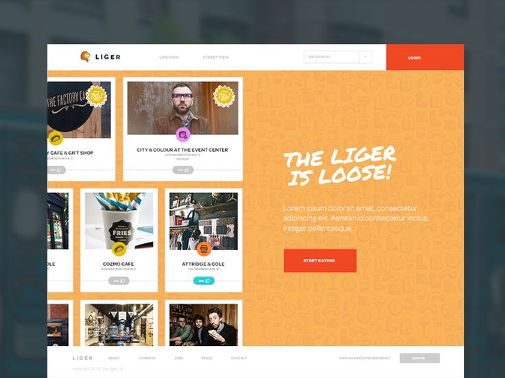 Liger Homepage by Sam Stratton for Focus Lab