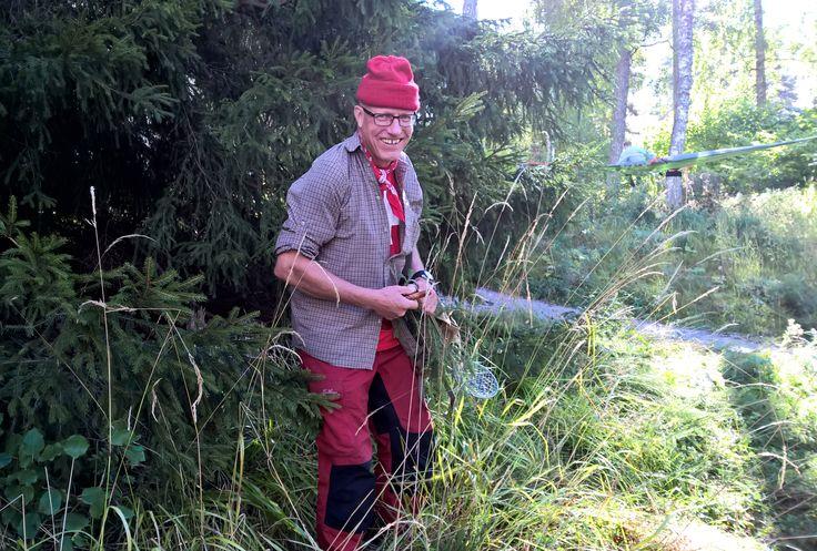 World class chef turned wilderness guide Markus Maulavirta gathers some ingredients. The Day of Finnish Nature 2015. Photo: Metsähallitus / Jukka-Pekka Ronkainen