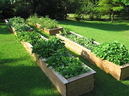 $10 DIY raised garden beds