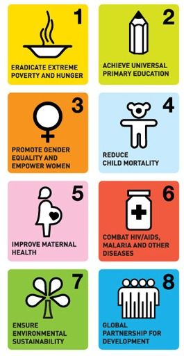 What are the Millenium Development Goals? What they are, why they matter, and what you can do about them.