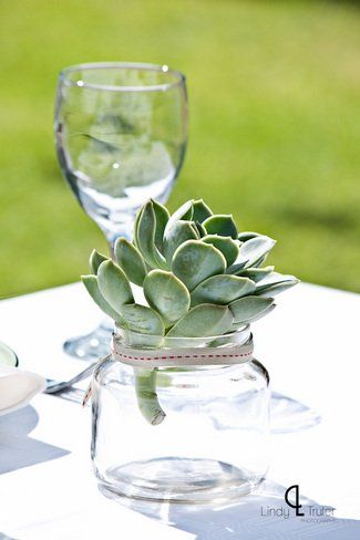 #Succulent wedding table decor ft. in Eco Friendly Karoo Style Garden Wedding, South Africa | Confetti Daydreams ♥  ♥  ♥ LIKE US ON FB: www.facebook.com/confettidaydreams  ♥  ♥  ♥ #Wedding #RealBride #GreenWedding