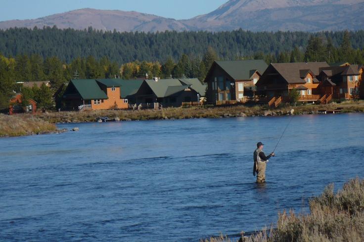 196 best whitefish images on pinterest columbia falls for Whitefish montana fishing