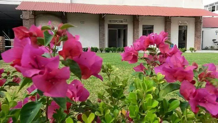 Hotel Del Alba - Hotel económico en Aguascalientes