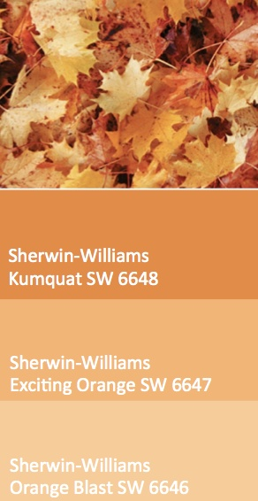 Kumquat (SW 6648), Exciting Orange (SW 6647) and Orange Blast (SW 6646) fallen leaves