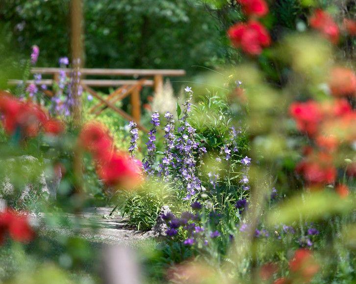 Willkommen Auf Natur Im Garten Nature Plants Table Decorations