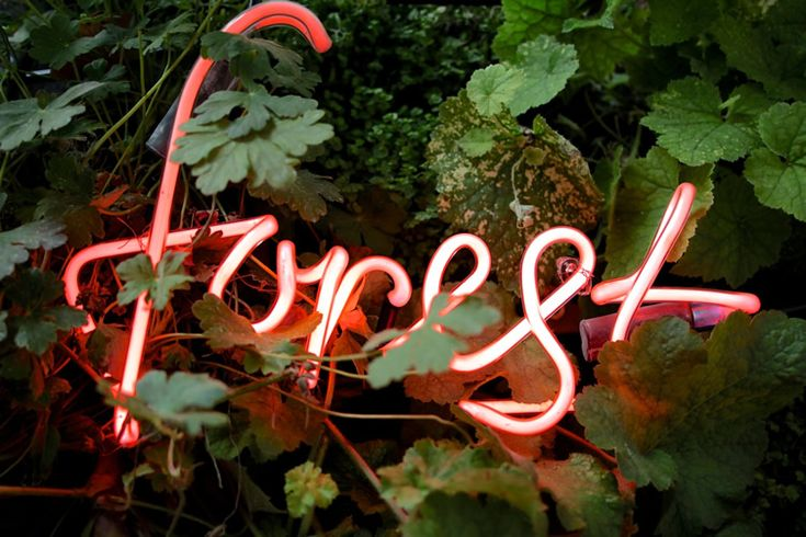 Love this neon forest sign covered with all these leaves.