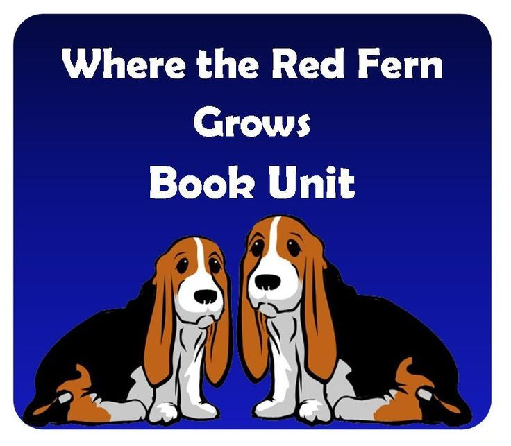 where the red fern grows thesis sacrifice Faded pages: where the red fern grows column by  billy's parents are  sacrificing their children, in a way, throughout the book his mother.