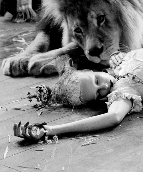 'Atlas The Lion' - Photo by Tim Walker For Love Magazine, The Sweetie Issue, September 2013. °
