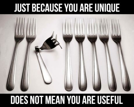 Just because you are unique, does not mean you are useful.