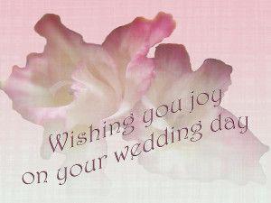 Wedding Card Wishes: 16 SampWedding Card Wishesle Messages