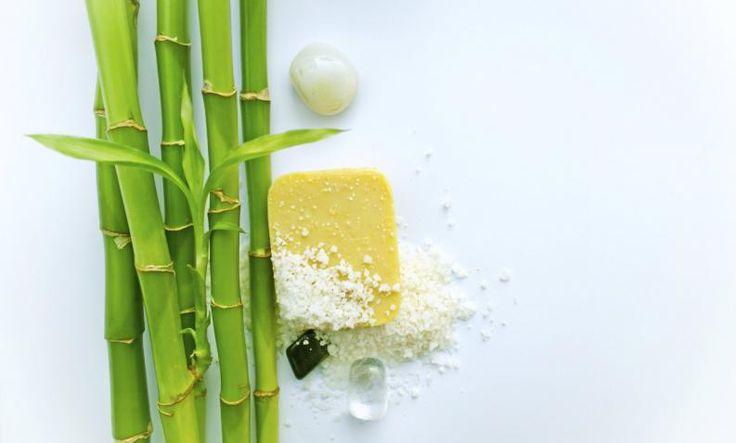 Las plantas pueden convertir tu hogar en tu santuario sin mucho esfuerzo o gasto. No solo decoran, sino que también purifican el oxígeno, y te ayudan con el Feng Shui de cualquier espacio. En esta oportunidad, te contamos cuáles son las mejores plantas para el baño según el Feng Shui.#1 BambúPlanta del Feng Shui