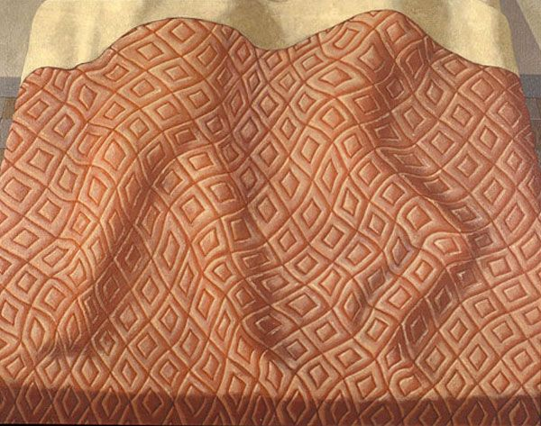 Domenico Gnoli 19 | fabric detail