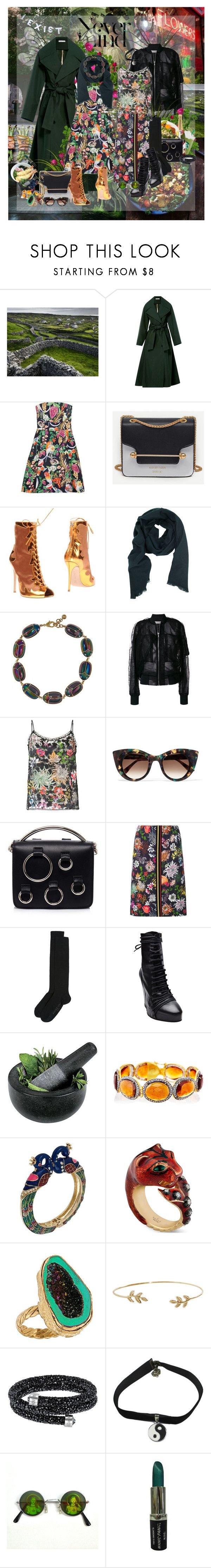 """""""Printed"""" by lady-redrise ❤ liked on Polyvore featuring National Geographic Home, Oscar de la Renta, Matthew Williamson, Gianvito Rossi, TIBI, Lulu Frost, Rick Owens, MARC CAIN, Thierry Lasry and MSGM"""