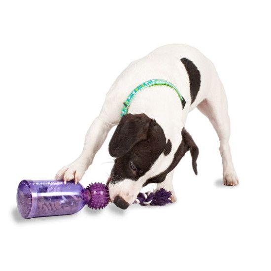 Make Dog Tug Toy: 17 Best Ideas About Dog Enrichment On Pinterest