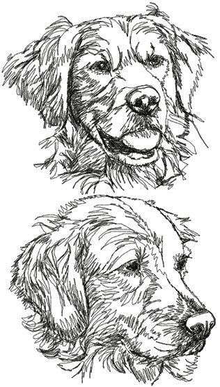 Advanced Embroidery Designs - Golden Retriever Set