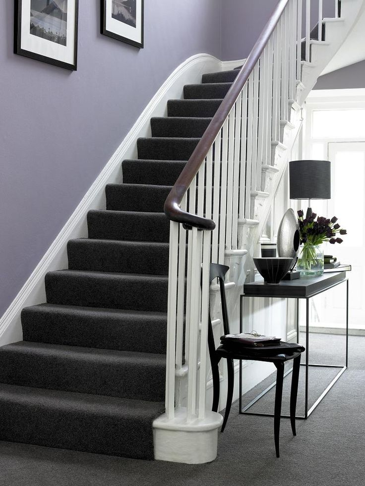 Purple walls, white trim, dark brown/black furniture and charcoal carpet...inspired elegance