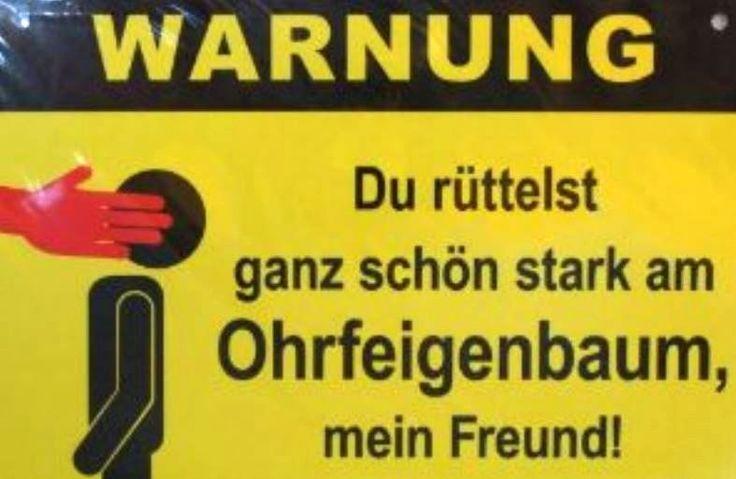 Ohrfeigenbaum ;-)