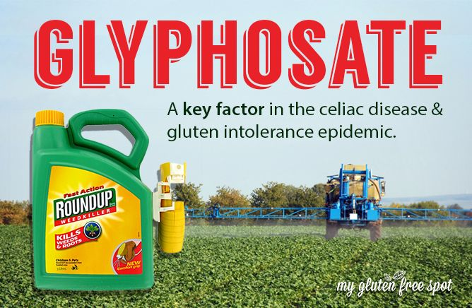 If you eat cereal or wheat products you need to know this! http://thehealingfrequency.com/what-is-glyphosate-poisoning-is-roundup-safe/