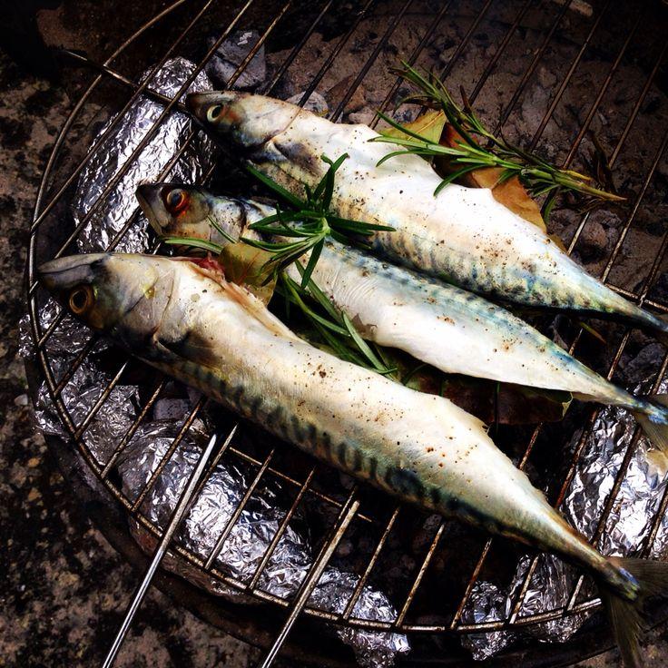 Recette de poissons grillés au beurre de salicorne