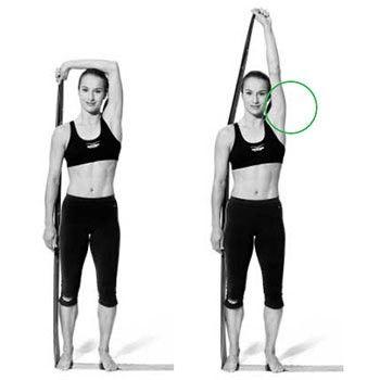 Gym avec élastiques : Bras - Exercice fitness N°2