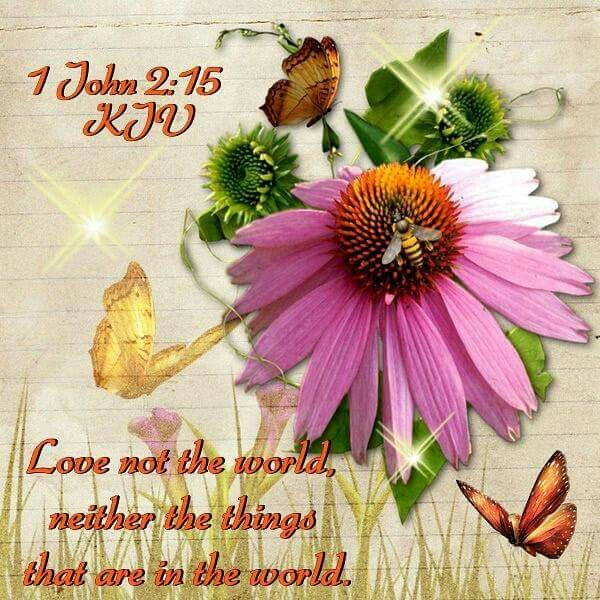 """1 John 2:15 KJV """"Love not the world, neither the things that are in the world."""""""