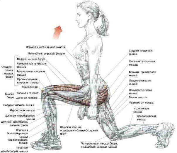 Выпады. Хорошее упражнение для твоих ног. Делай его правильно!